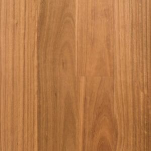 Blackbutt (14mm)