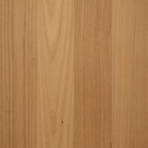 Blackbutt (12mm)