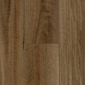 PG1501 NSW Spotted Gum