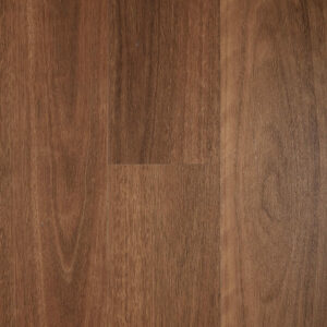 Smoked Spotted Gum