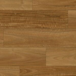 NSW SPOTTED GUM OT