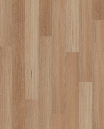 Tasmanian Oak OT